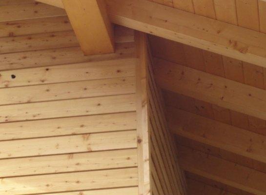 Casa in legno Dimaro CM 2012